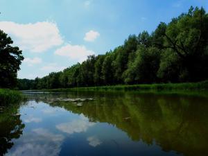 Nyolcadikosainknak_Cserta-Duna 2019/05/18